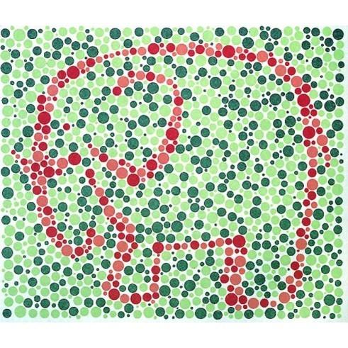 Farbtafeln nach Matsubara für Kinder / 10 verschiedene Tafel